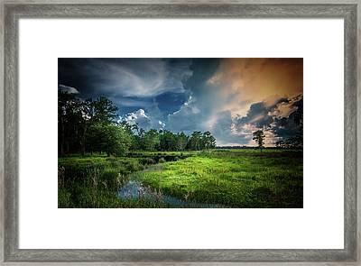 Milk And Honey Framed Print by Marvin Spates