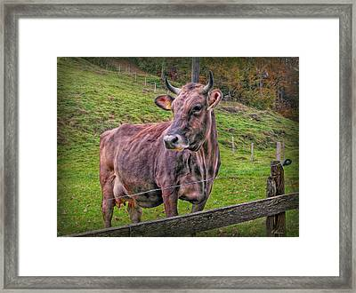 Milk Chocolate Basic Supplier Framed Print by Hanny Heim