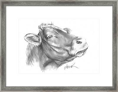 Milk Cow Framed Print