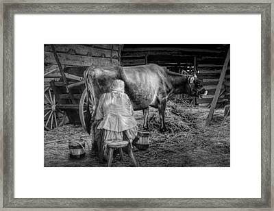 Milk Maid Milking A Cow In The Barn In Black And White Framed Print by Randall Nyhof