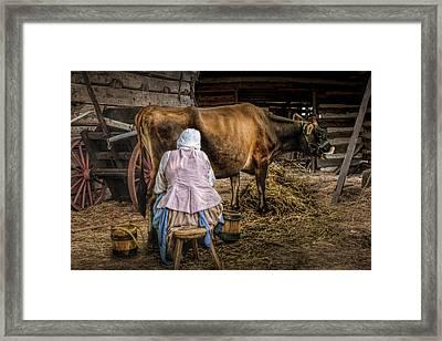 Milk Maid Milking Framed Print by Randall Nyhof