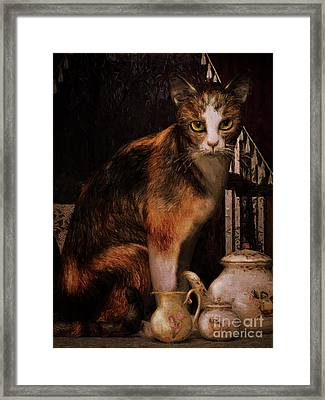 Framed Print featuring the digital art Milk No Sugar Calico Cat by Shanina Conway