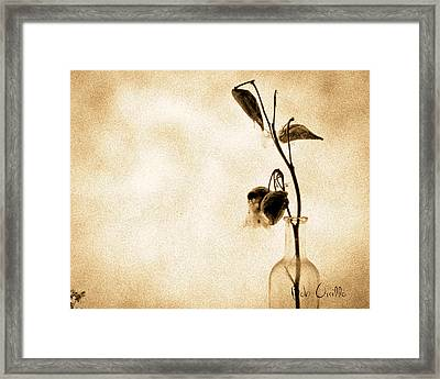 Milk Weed In A Bottle Framed Print