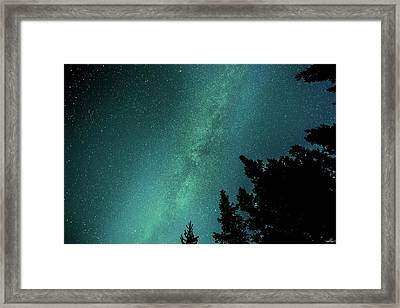 Milky Way Above The Trees Framed Print