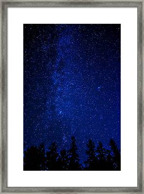 Milky Way And Trees Framed Print
