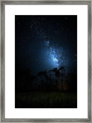 Framed Print featuring the photograph Milky Way At Big Cypress National Preserve by Mark Andrew Thomas
