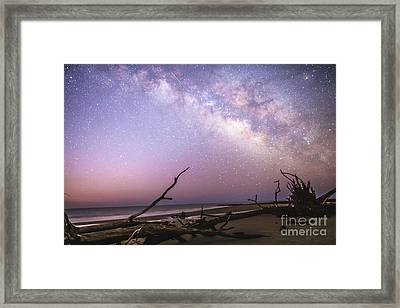 Milky Way Roots Framed Print