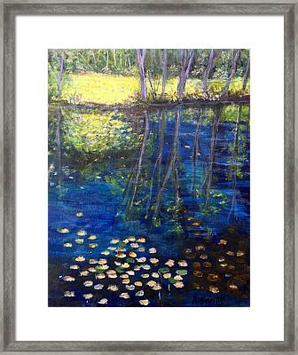 Mill Brook Kingston N H Framed Print