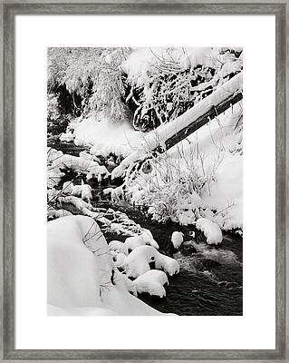 Mill Creek Canyon In Winter Framed Print by Dennis Hammer