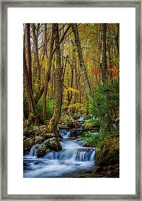 Mill Creek In Fall #1 Framed Print