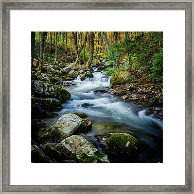 Mill Creek In Fall #3 Framed Print