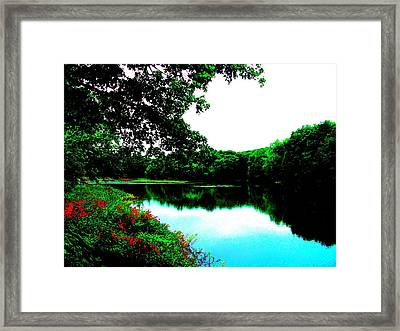 Mill Pond - Ashland Ma Framed Print by Cliff Wilson