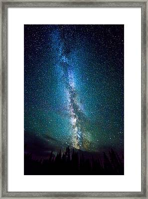 Millky Way Over Lodgepole Pines Framed Print