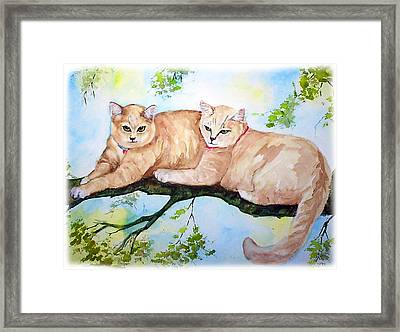 Milo And Timon Framed Print by Gina Hall