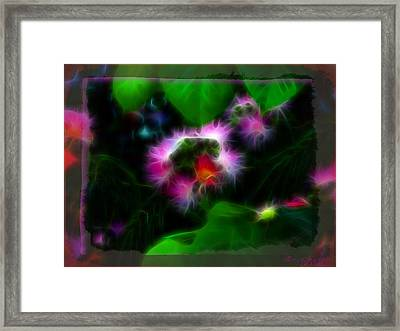 Mimosa Flower Framed Print by EricaMaxine  Price