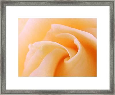 Mind Curl Framed Print