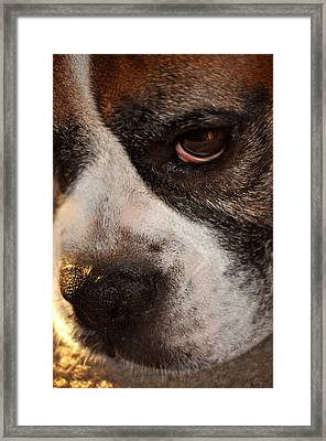 Mind Reader Framed Print