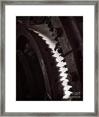Mind The Teeth Framed Print by Royce Howland