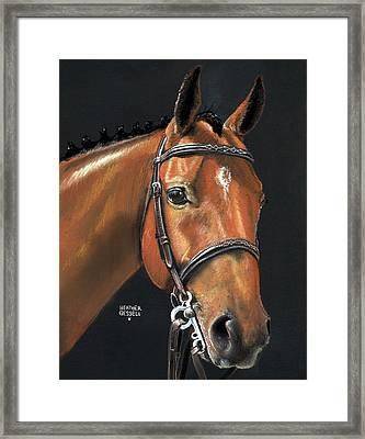 Miner - Bay Horse Portrait Framed Print
