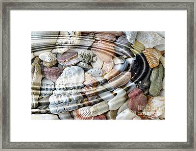 Framed Print featuring the digital art Minerals And Shells by Michal Boubin