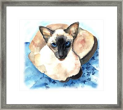 Ming Framed Print by Gina Hall