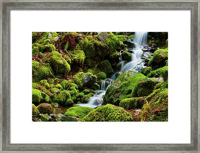 Mini Cascading Waters Framed Print