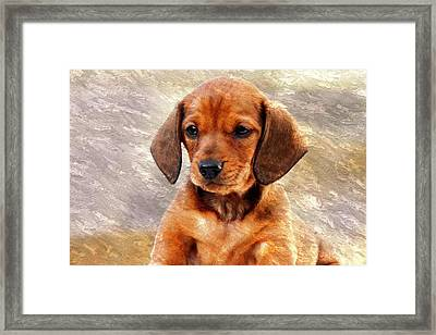 Mini Dachsund Dog Oil Painting Framed Print by Design Turnpike