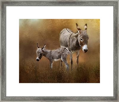 Mini Donkey Mother And Baby Framed Print by TnBackroadsPhotos