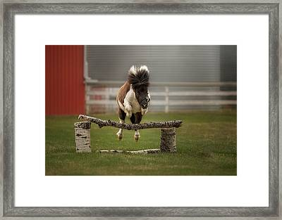 Mini Jumper Framed Print