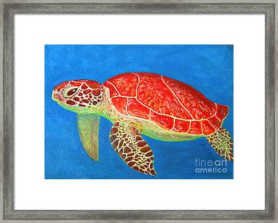 Mini Turtle Framed Print