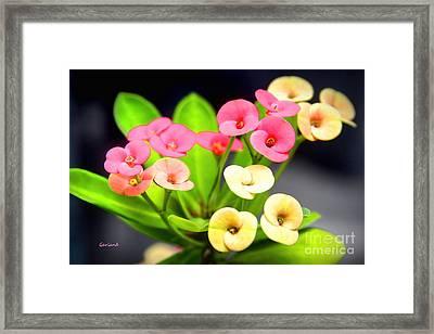 Miniature Flowers Framed Print