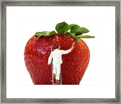 Miniature Man Painting Strawberries Framed Print