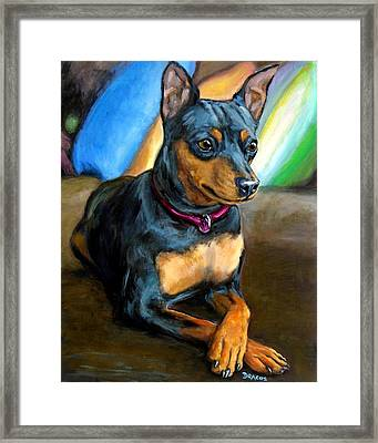 Miniature Pinscher Formal Framed Print by Dottie Dracos