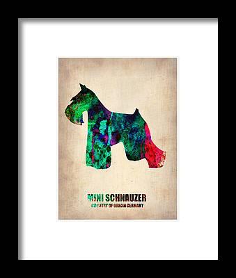 Schnauzer Framed Prints