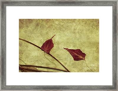 Minimal Art Framed Print by Aimelle