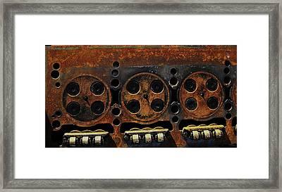 Framed Print featuring the photograph Minks by Cyryn Fyrcyd