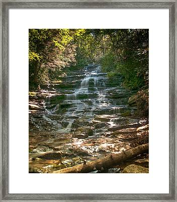 Minnehaha Falls Framed Print