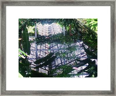 Mirror Image II Framed Print by Anna Villarreal Garbis