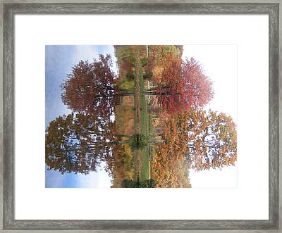 Mirror Mirror Framed Print by James and Vickie Rankin