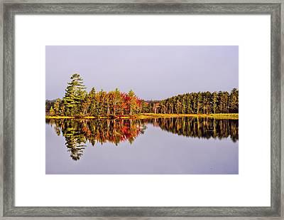 Mirror Of Beauty Framed Print