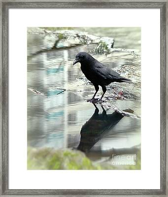 Mirror On The Wall Framed Print