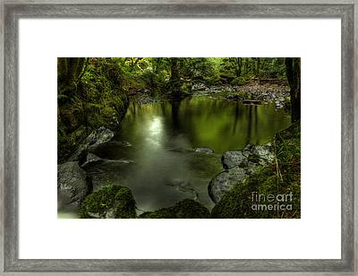 Mirror Pool Framed Print