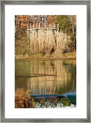 Mirror Spring 1 Framed Print by Douglas Barnett