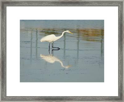 Mirror Step Framed Print by Lynda Dawson-Youngclaus