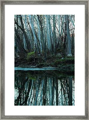 Framed Print featuring the photograph Mirrored by Bruce Patrick Smith