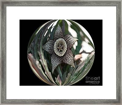 Captured Carrion Succulent Framed Print