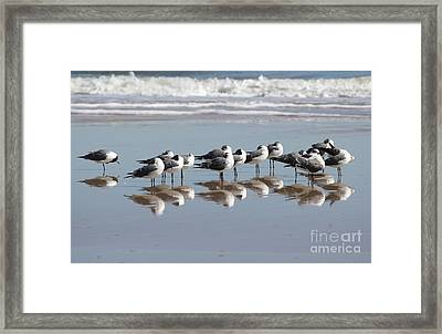 Mirrored Flock Framed Print