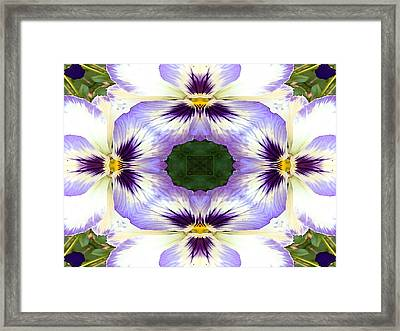 Mirrored Pansies - Horizontal Framed Print by Jon Woodhams