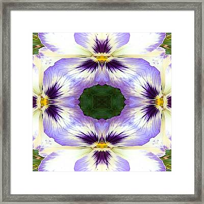 Mirrored Pansies - Square Framed Print by Jon Woodhams