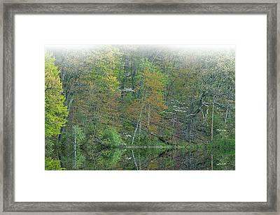 Mirrored Reflections Hall Lake Framed Print